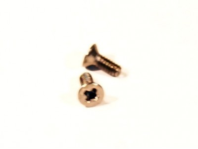 M2 4mm Screws (flat head)