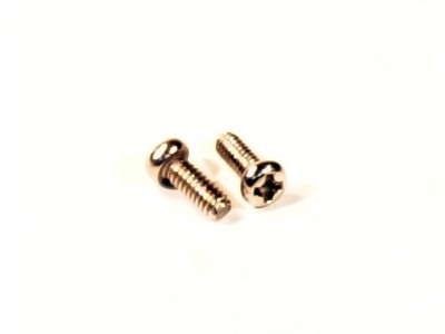 M2 4mm Screws (pan head)